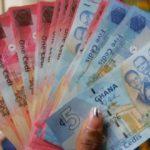 Dollar denominated bonds to stabilize cedi – Economist