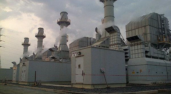 The T3 plant