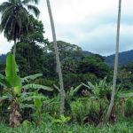 EPA scales up effort to preserve biodiversity