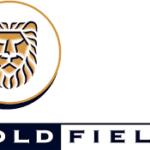 Gold Fields announce profit gains