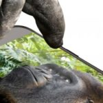 New Gorilla Glass helps prevent phone smashes