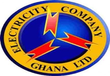 NPP activist files suit against ECG concession