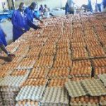 Institute retail price for eggs - Poultry farmers told