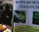CRI develops more disease-resistant food crops