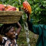 USAID empowers agribusinesses to collaborate