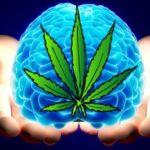Does Smoking Weed Make You More Creative?