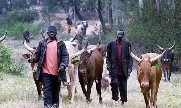 Gov't depolys 200 security forces to face-off with herdsmen