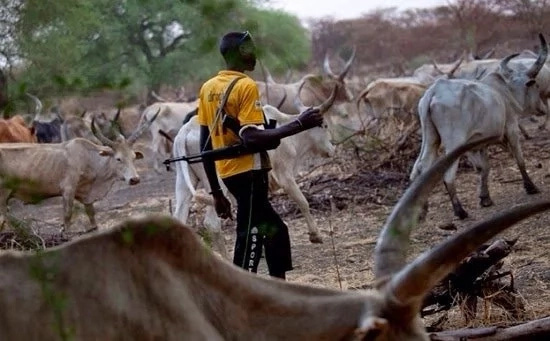 Fulani crises in West Africa; Nigeria commences registration of herdsmen