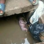 A/R: Police hunt for woman who dumped baby in gutter