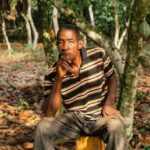 Illegal gold mining boom threatens cocoa farmers