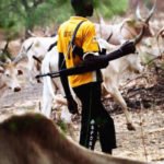 Fresh Fulani Herdsmen attack leaves 7 Hospitalized