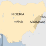 Mosque bomb attack kills 20 in Nigeria