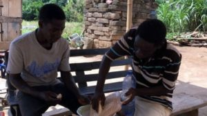 Two brothers in Eastern Region turn cassava waste to electricity