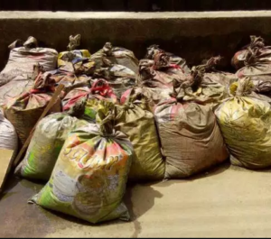 PHOTOS: Man caught with 27 bags of human faeces