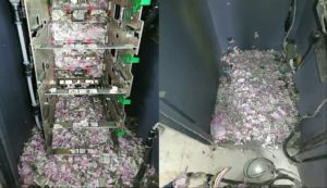 Hungry rat chews over $17,500 of cash inside ATM