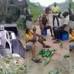 Men celebrate with bottles of beer in the middle of the road after surviving truck accident