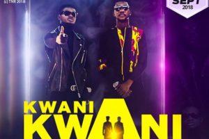 VIDEO: TiC, Kuame Eugene out with 'Kwani Kwani' part 2