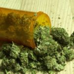 New studies show that marijuana enhances and increases sex