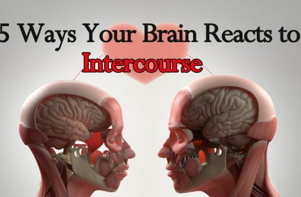 5 Ways your brain reacts to intercourse