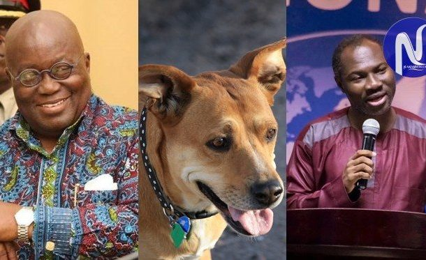 "Pastor alleges President Akufo-Addo is spiritually led by a ""Brown Dog"""