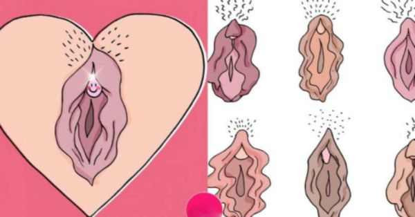 10 FACTS about the clitoris that will blow your mind
