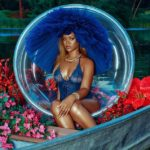 PHOTOS: Rihanna flashes her curves and nipples as she poses in a sexy sheer bodysuit