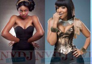 Akufo Addo's gov't ordered Yvonne Nelson's dress for Joselyn Dumas - Manasseh Azure Writes