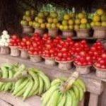 Tepahene vindicated as Ghana begins food export to neighbouring countries