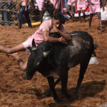 Traditional Indian Bull-Taming Event 'Jallikattu' Kicks Off (VIDEO)
