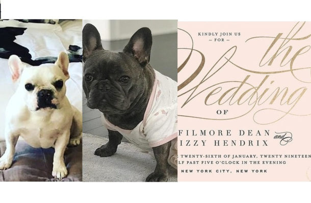 PHOTOS: Whoopi Goldberg announces that her family dog is getting married, shares wedding invitation
