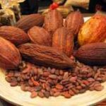 We need collective effort to Improve Cocoa Sector - COCOBOD