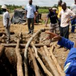 Dozens feared dead in Zimbabwe gold mine flood