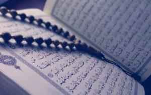 Quran BURNT Amid Islamists' Friday Prayer Near Danish Parl't (PHOTO, VIDEO)
