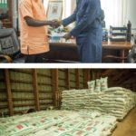NSS supports Free SHS with maize