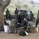 Congolese troops kill 36 Burundi rebels in east