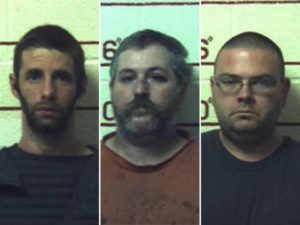 Three men sentenced to 20-41 years for having s*x with nine female horses, a cow, a goat and dogs