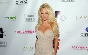 Pamela Anderson Sets Pulses Racing in Her FIRST Retro Style Vogue Photoshoot