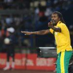 2019 AFCON: Senegal coach Aliou Cisse rejects favorites tag
