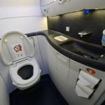 BIZARRE: Passenger jet grounded after foetus was found blocking the toilet