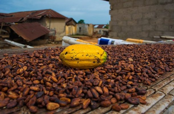 Ghana and Cote d'Ivoire set minimum price of cocoa at$2,600