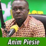 Akufo-Addo has mismanaged the Energy Sector - Anim Piesie