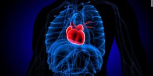 Broken heart syndrome and cancer are connected – Scientists