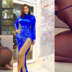 BUSTED: Princess Shyngle caught RED-HANDED stealing Instagram user's body and passing it off as hers