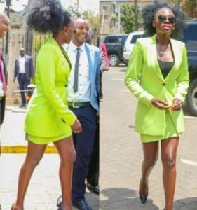 PHOTOS: Singer ordered 'to cover her legs' before addressing parliament after showing up in a mini skirt