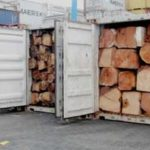 Gov't to announce measures to curb illegal Rosewood Export