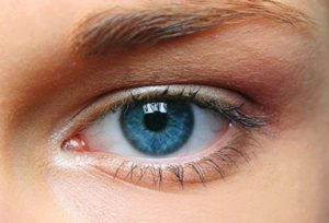 Nutrition and Eye Health: best foods for your eyes