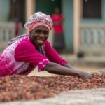 COCOBOD distributes coffee seedlings to farmers