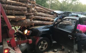 PHOTOS: Driver narrowly escapes death after his car was impaled by logs from truck