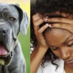 University lady opens up on sexual encounter with a dog