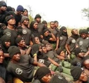 VIDEO: Western Togoland separatists allegedly unveil defense forces